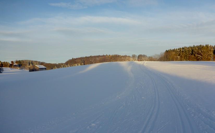 Erste Spuren im Schnee