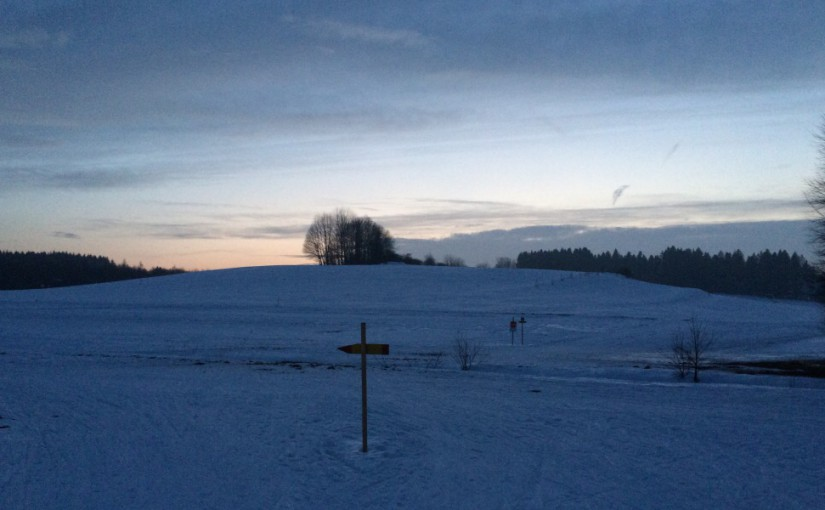 Abends im Feld …